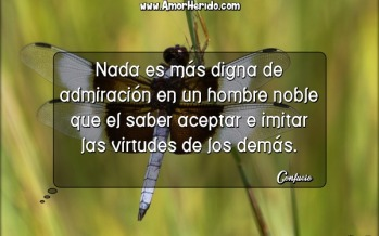 13893_nada-es-mas-digna-de-admiracion-en-un-hombre-noble